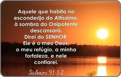 Salmo 91 (Copy)