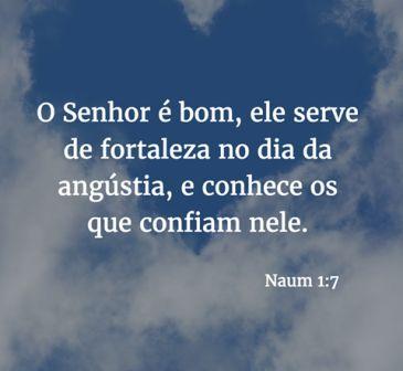 Naum 1,7