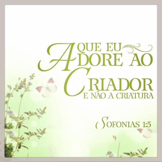 Sofonias 1,5