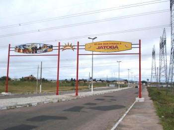 Jatobá Pernambuco fonte: ramosfilho.files.wordpress.com
