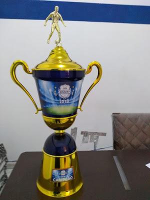 Copa Sinserp