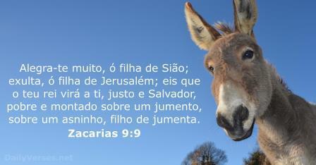Zacarias 9,9