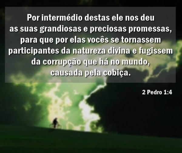 2 Pedro 1,4